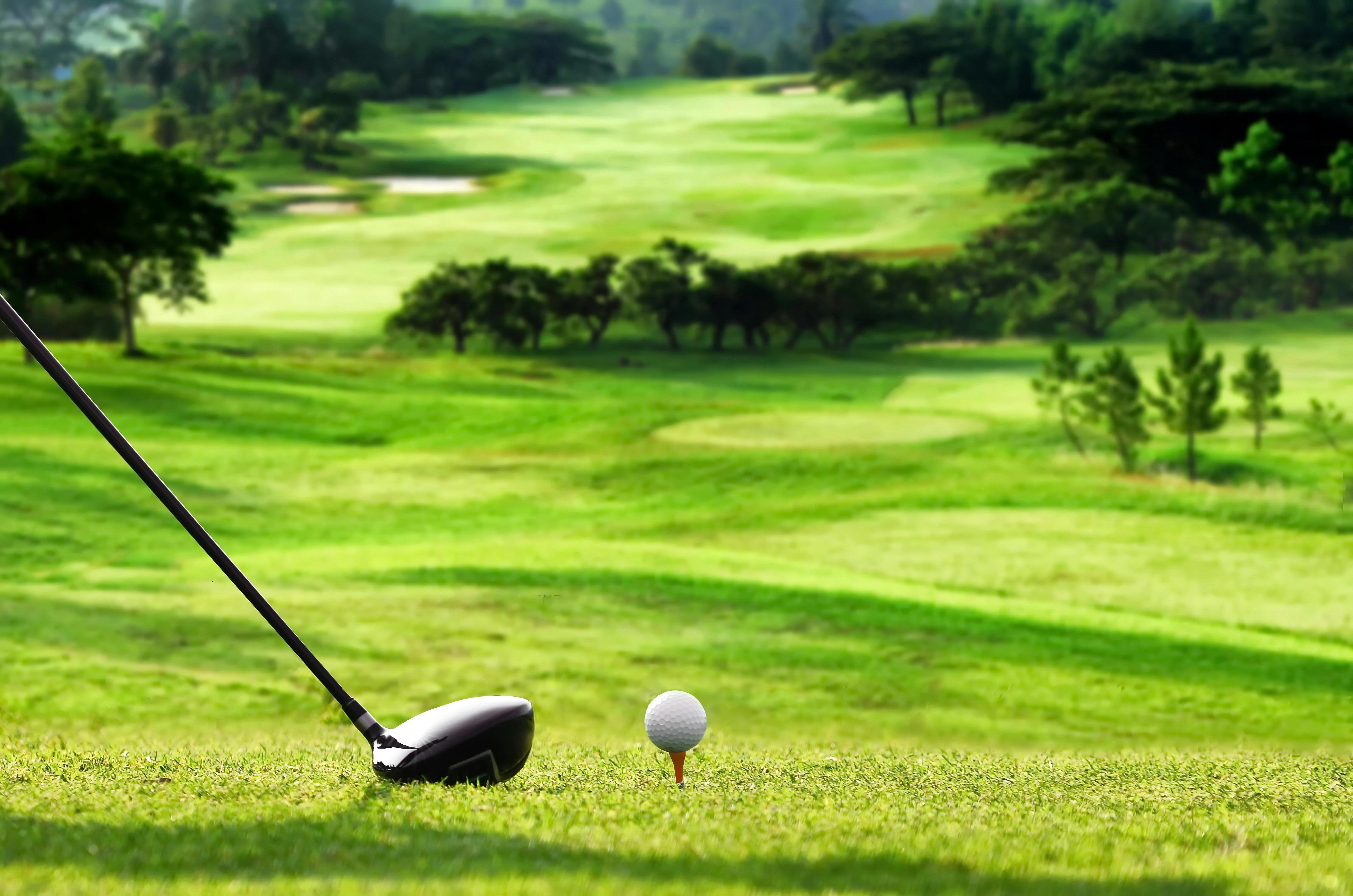 golf ball industry essay